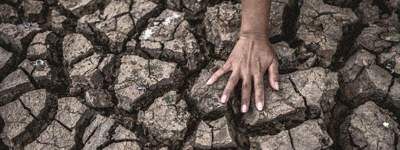 Diplomado en Cambio Climático